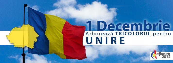 arboreaza tricolorul 1 decembrie 2013